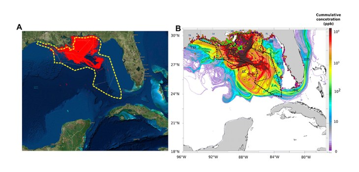 Fig. 2 Spatial DWH cumulative extents. (A) Cumulative NESDIS anomaly daily composites integrated from 20 April 2010 to 21 July 2010. Daily fishing closures are marked with gray lines; the cumulative fishing closure area is marked with a thick dashed yellow line. The black star represents the location of the DWH blowout [adapted by permission from Springer-Nature: Scenarios and Responses to Future Deep Oil Spills: Fighting the Next War by S. Murawski, C. Ainsworth, S. Gilbert, D. Hollander, C. Paris, M. Schlüter, D. Wetzel, Eds., 2019 (18)]. (B) Cumulative value of daily average oil concentrations (ppb), integrated across the same time span as (A) and across water depths. Vertical depth layers are 0 to 1 m, 1 to 20 m, and in 20-m increments down to 2500 m. Sediment and water samples with higher-than-background concentration are marked in bright green and dark blue circles, respectively [adapted by permission from Springer-Nature: Scenarios and Responses to Future Deep Oil Spills: Fighting the Next War by S. Murawski, C. Ainsworth, S. Gilbert, D. Hollander, C. Paris, M. Schlüter, D. Wetzel, Eds., 2019 (18)]. Red crosses in (B) represent approximate locations of DWH-related oil detections reported in previous studies: (i) (9), (ii) (7), (iii) (12), (iv) (13), and (v) (15). Daily fishery closures are marked with black polygons; the cumulative fishery closure area is marked with a dashed thick polygon. AB, Apalachee Bay; DP, Deep Plume; EFS, East Florida Shelf; FK, Florida Keys; LC, Loop Current System; TXS, Texas Shores; WFS, West Florida Shelf. (C) Categorization of the modeled oil spill are as follows: (i) nontoxic, PAH concentrations above background level and smaller than 0.5 and 1 ppb at the surface (depth, 0 to 1 m) and in the water column (depth, >1 m), respectively; (ii) toxic-to-biota and invisible, PAH concentrations 0.5 to 17 ppb at the surface and above 1 ppb in the water column; and (iii) toxic and visible, PAH concentrations above 17 ppb. In (C), categorie