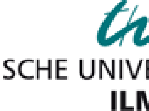 TU Ilmenau: Künstliche neuronale Netze lernen wie der Mensch im Schlaf