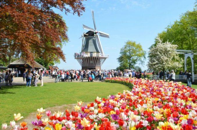 wisata Kampoeng Tulip Bandung Ala Belanda