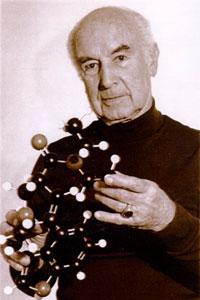 Hoffman Holding LSD Model