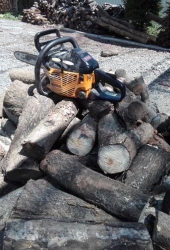 台風一過で薪づくり