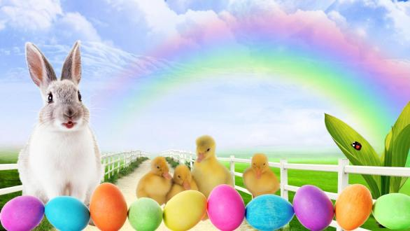 Happy Easter Bunny Images