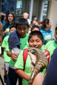 Photo courtesy Molina Healthcare: field trip, Aquarium of the Pacific.
