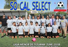 Soccer-team-picture