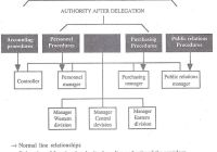 How Functional Authority is Delegated within the Organization