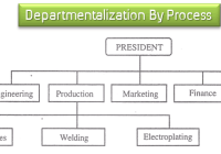 Departmentalization of Organization by Process Types