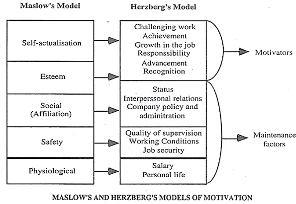 Why is Maslow and Herzberg Theory of Motivationdifferent?