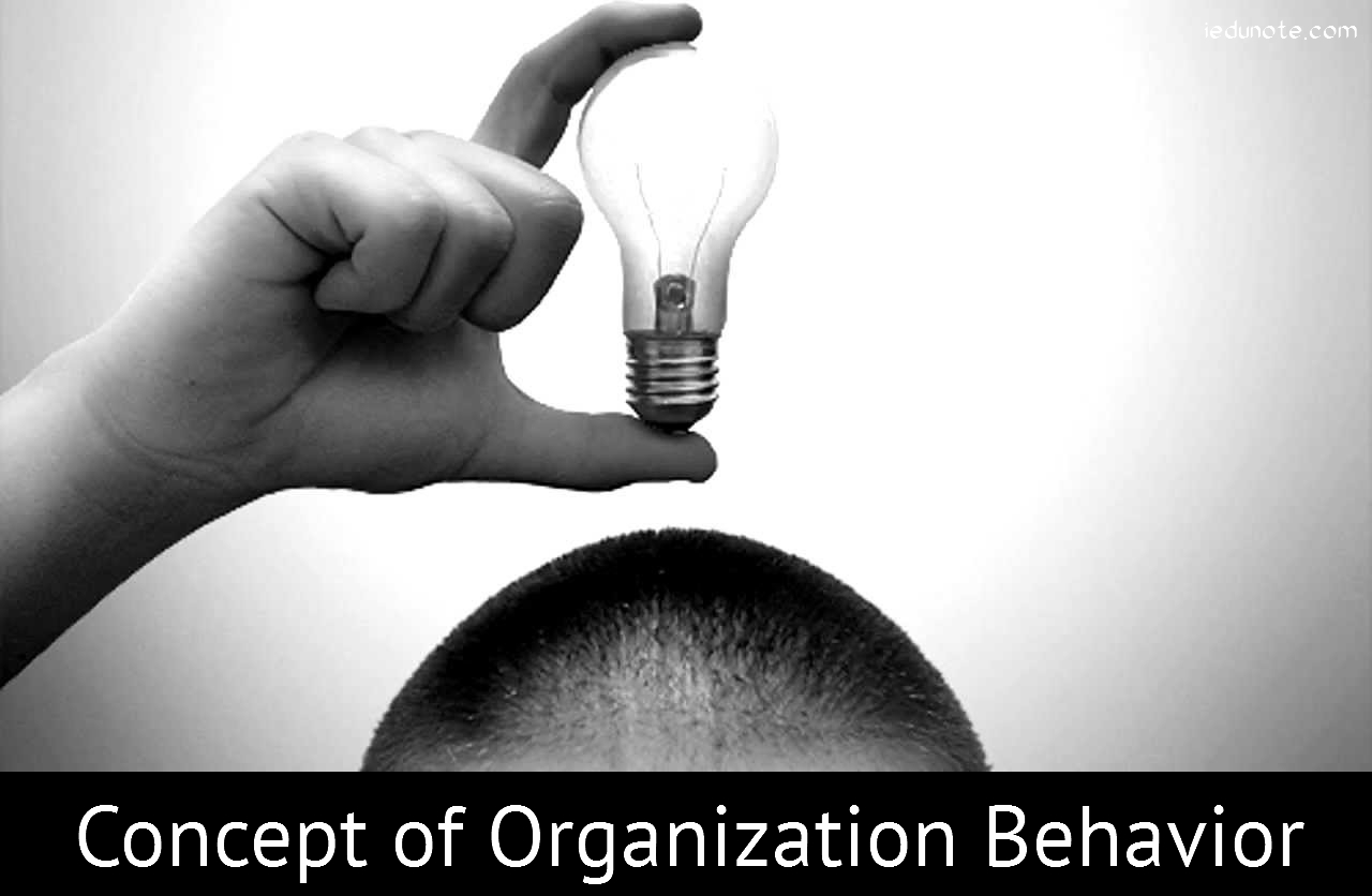 Fundamental Concepts of Organizational Behavior