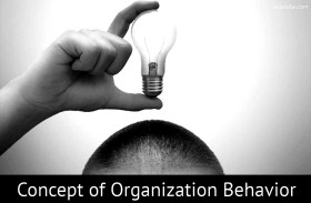 Fundamental Concepts of Organizational Behavior