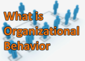 What is Organizational Behavior