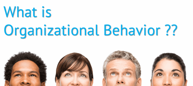 Organizational Behavior Definition
