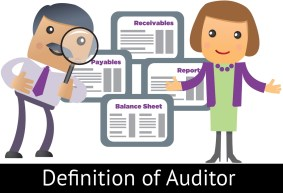 auditor definition qualities and types of auditors