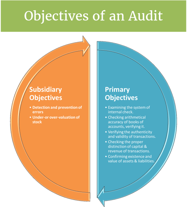 Objectives of an Audit