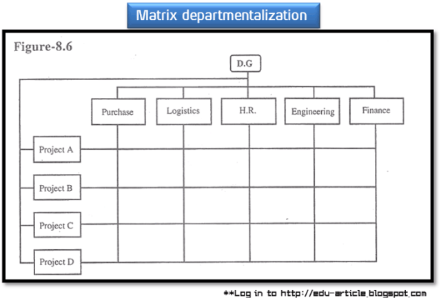 matrix departmentalization guidelines, advantages, problems