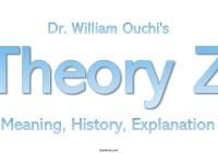Theory Z