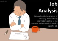 Job Analysis: Definition, Importance, Components, Methods, Purpose, Process