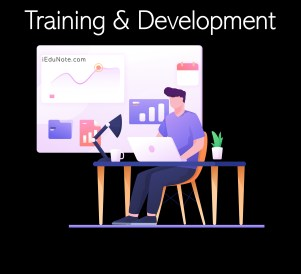 Difference between Training and Development