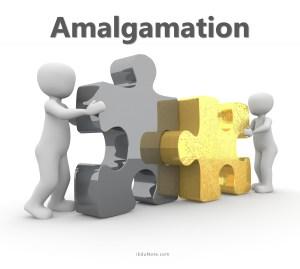 What is Amalgamation? Types of Amalgamation