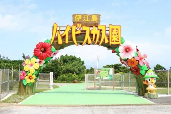 伊江島 ハイビスカス園