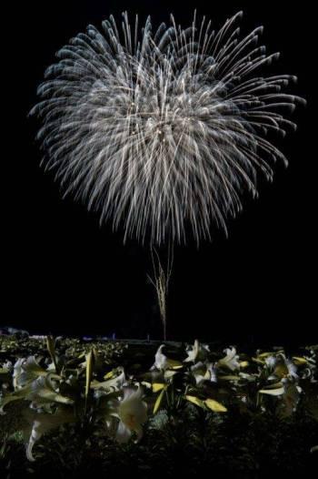 伊江島 ゆり祭り