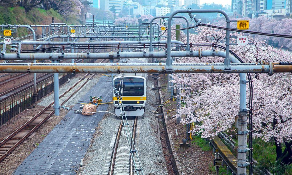 日本打工度假,留學日本