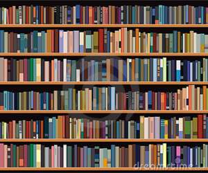 bookshelf-13943998
