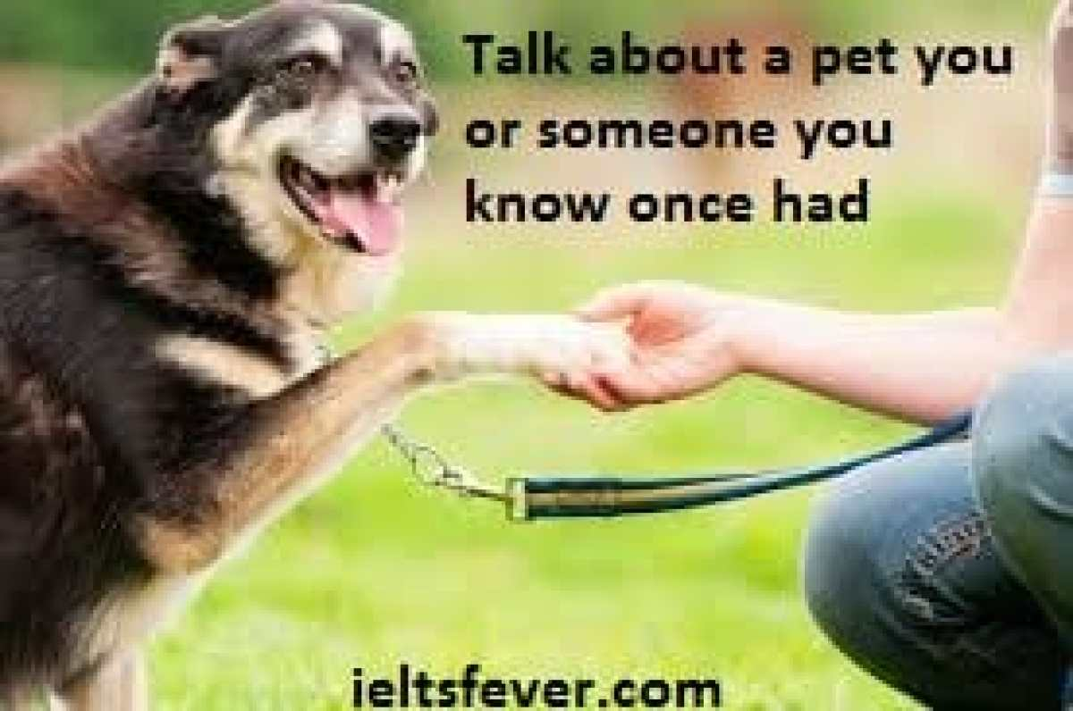 Talk about a pet you or someone you know once had ielts exam