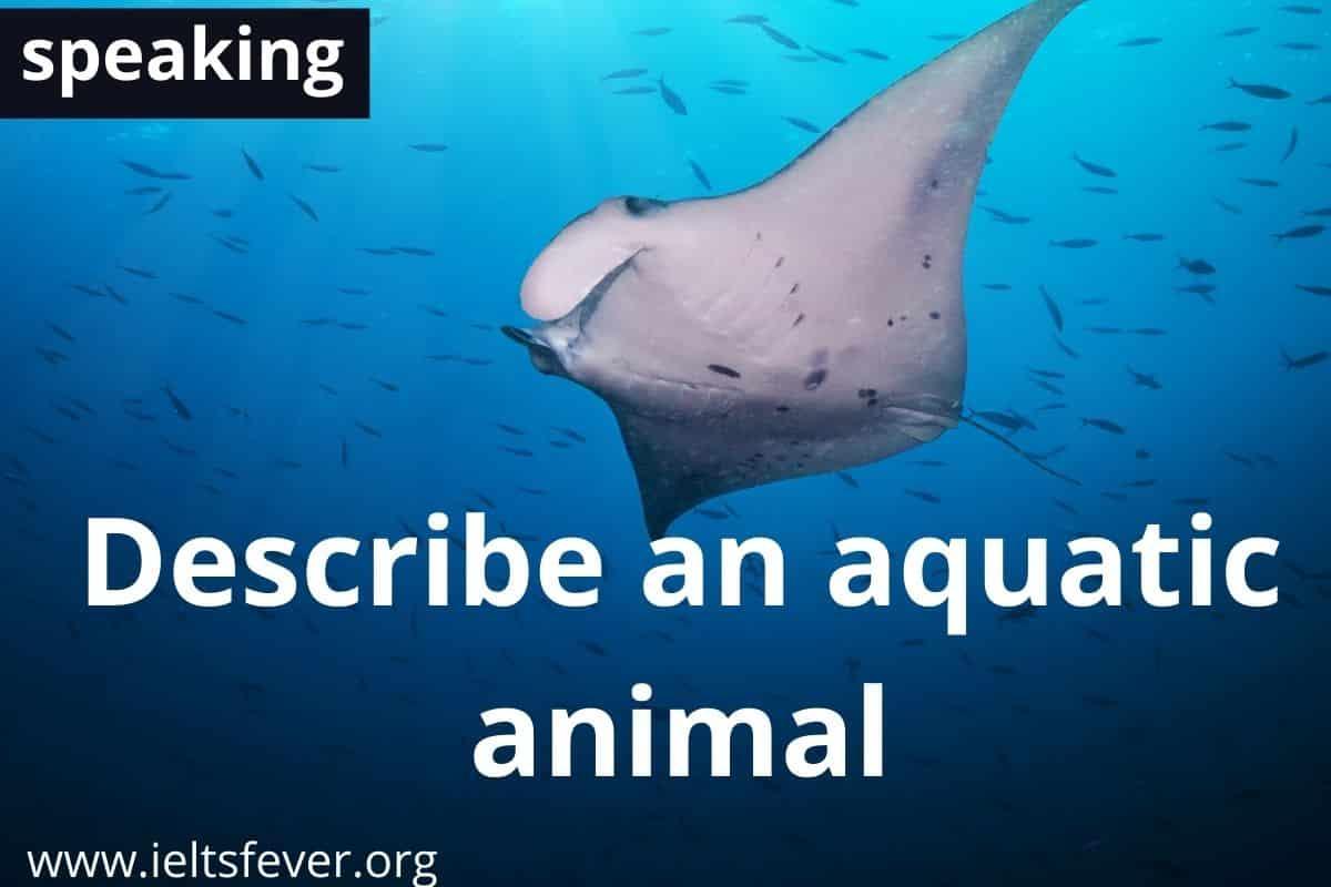 Describe an aquatic animal
