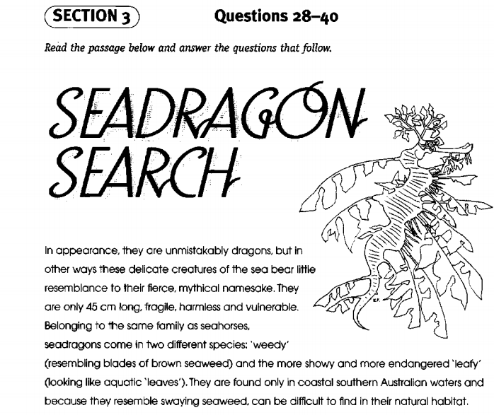 Seagragon search