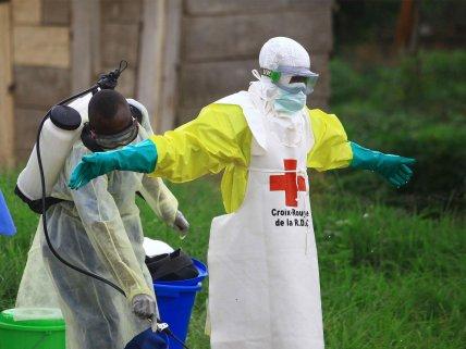 IELTS Reading Practice: Ebola
