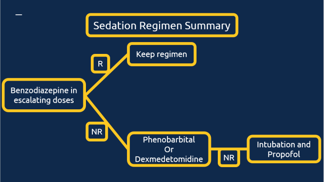 Summary of sedation strategy.