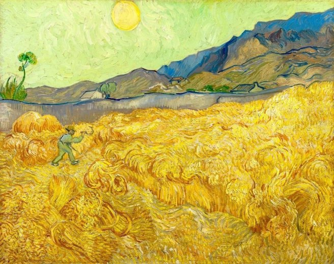Figure 1 – 'Wheatfield With a Reaper', 1889 - The abundance of yellow color in paintings such as this one has been said to have been associated with yellow vision seen with Digitalis toxicity