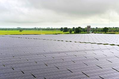 solar farm2
