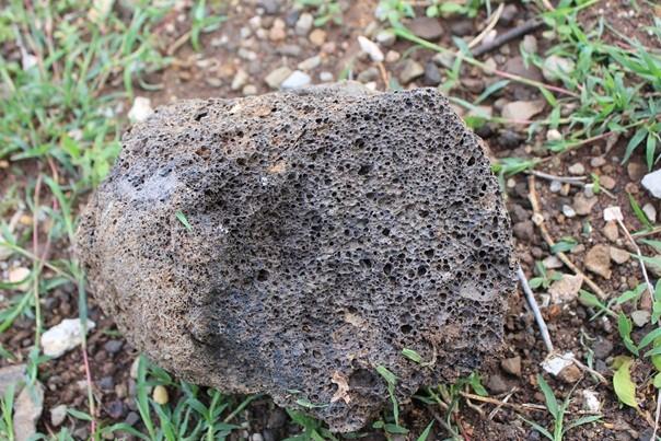 หินที่มีรูพรุน