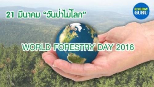 วันป่าไม้โลก