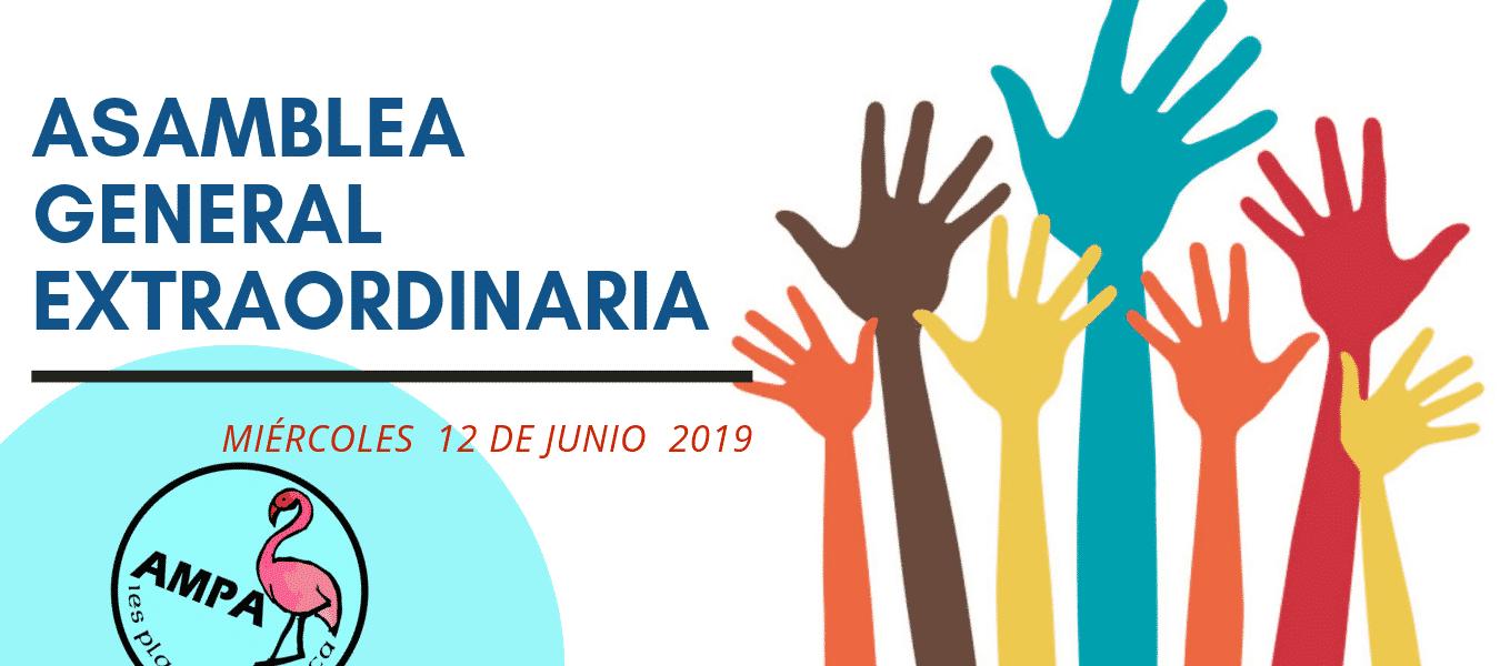 Asamblea General Extraordinaria MIÉRCOLES 12 de junio 2019