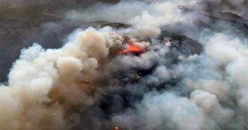 Расследование причины пожара на Gran Canaria не исключает злого намерения