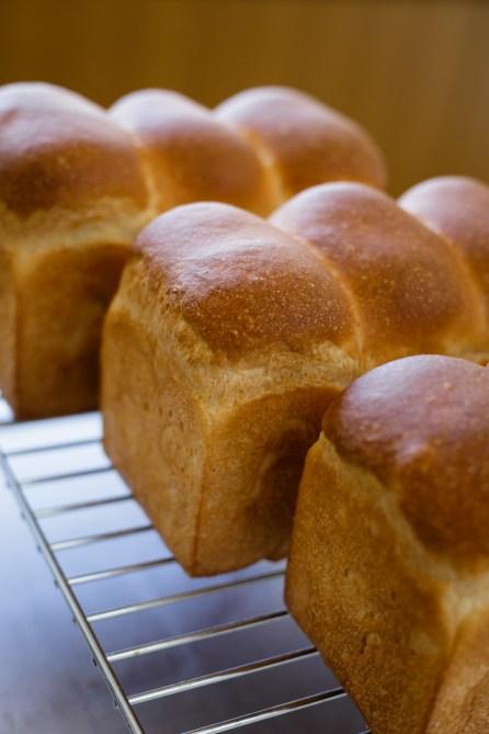 佳奈子さんのパンは色や形が本当に素晴らしいんです。パンが生きてるような存在感…