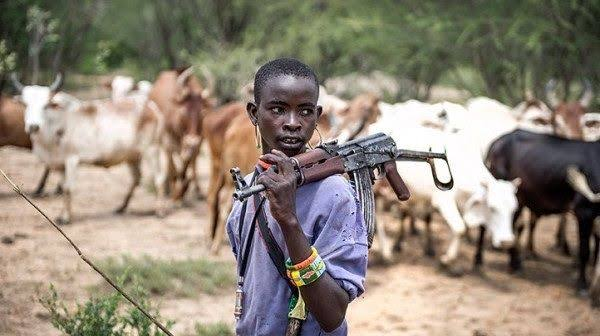 Fulani Herdsmen Attack Enugu Community