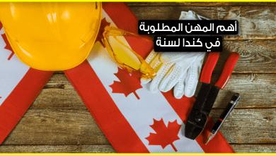 Photo of هذه هي أهم المهن المطلوبة في كندا لسنة 2019 .. فهل توجد مهنتك بينها؟