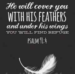 Wings of God