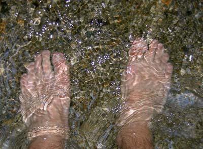 الماء الباردة