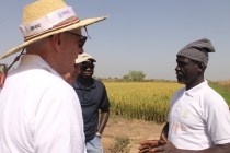 Scott Angle meets with Mohammed Issahaku Alhassan (right), a farmer at the Botanga Irrigation Scheme in Tamale, Ghana. Alhassan received a power tiller from the Feed the Future Ghana Agriculture Technology Transfer Project. He now mentors other farmers in the area.