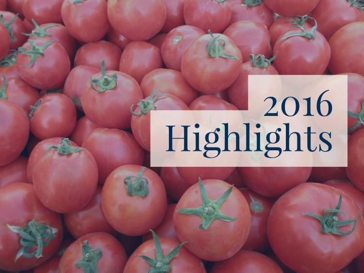 2016-highlights-2