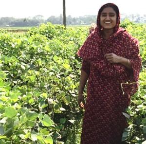 Rini Begum Bangladesh Vegetable AVPI