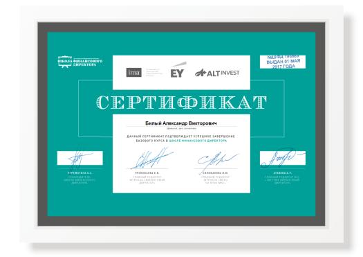Сертификат Билый Александр Викторович 2017