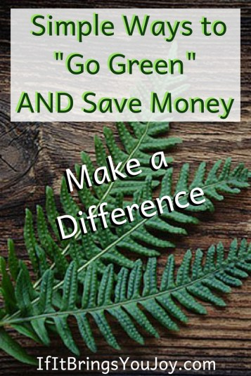 "Simple ""go green"" ideas that will help the environment AND save you money. Easy, eco-friendly ideas that will add up to a positive impact on the environment. #ecofriendly #environment"