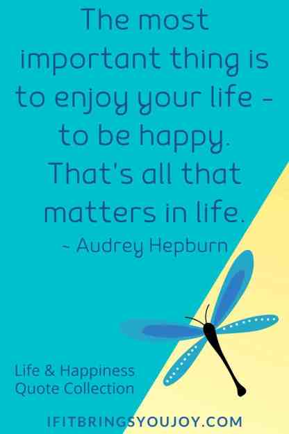 Quote about enjoying life