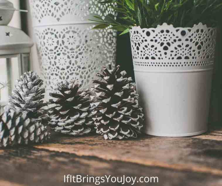Pine cones with home decor