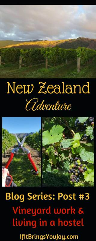 Discover through this 25-year-old American what it's like to work at a New Zealand vineyard, live at a hostel, and figure out how to have fun! Live New Zealand vicariously through this young man who got a work visa and has immersed himself in a new culture.